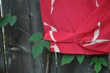kate spade peach blouse 045